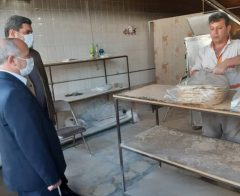 بازدید سرزده معاون فرماندار از چند واحد نانوایی در سطح شهر سلماس و تازه شهر